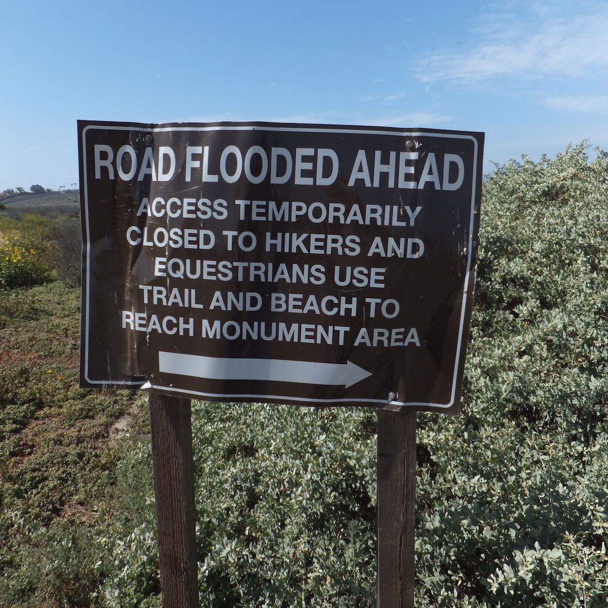 Border Field State Park - Road Flooded Sign